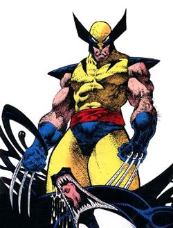 Wolverine visto da Sam Keith<br><i>(c) Marvel Comics</i>